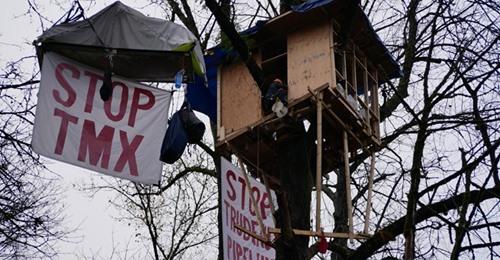 "Treesit platfor with ""Stop TMX"" banner"